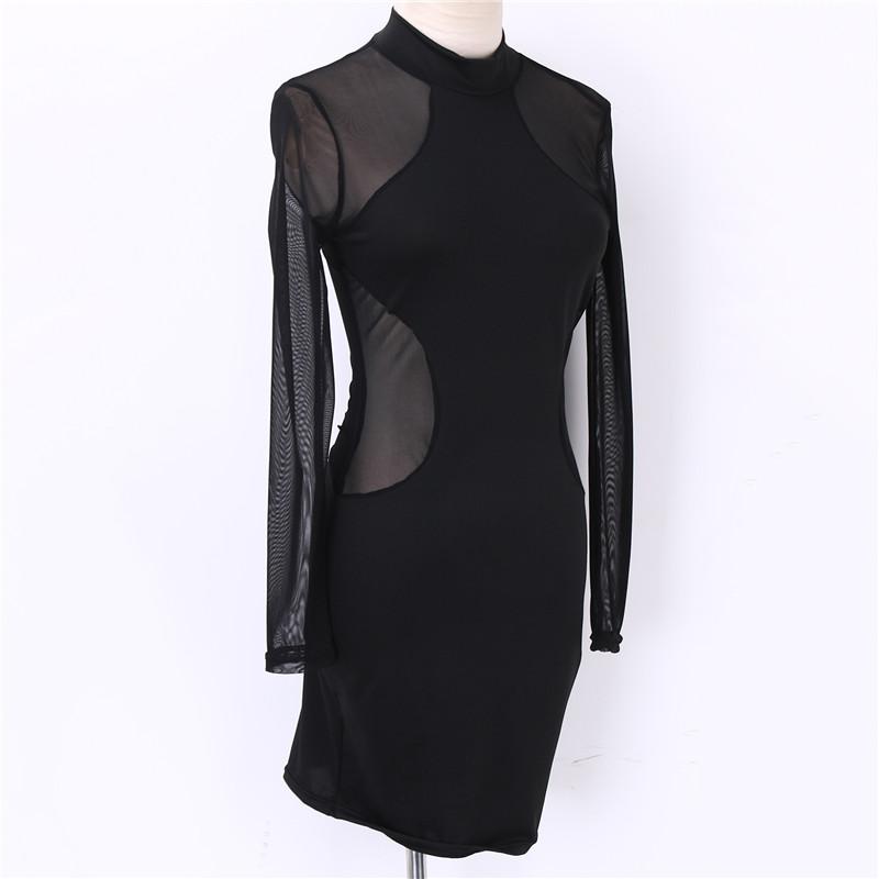 Bodycon See-Through Dress