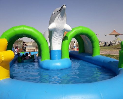 Kiddies Outdoor Inflatable Pool