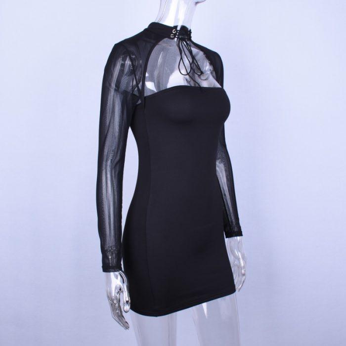 Long Sleeve See-through Dress