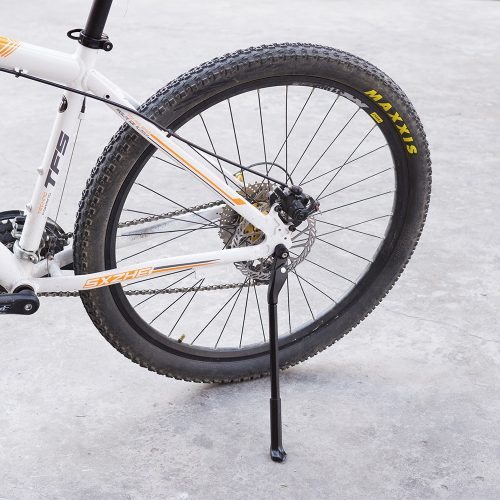 Carbon Adjustable Bike Stand